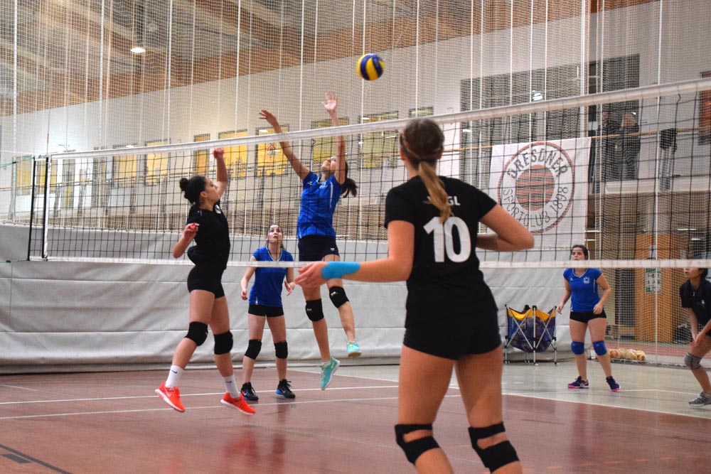 Volleyball at the FIS