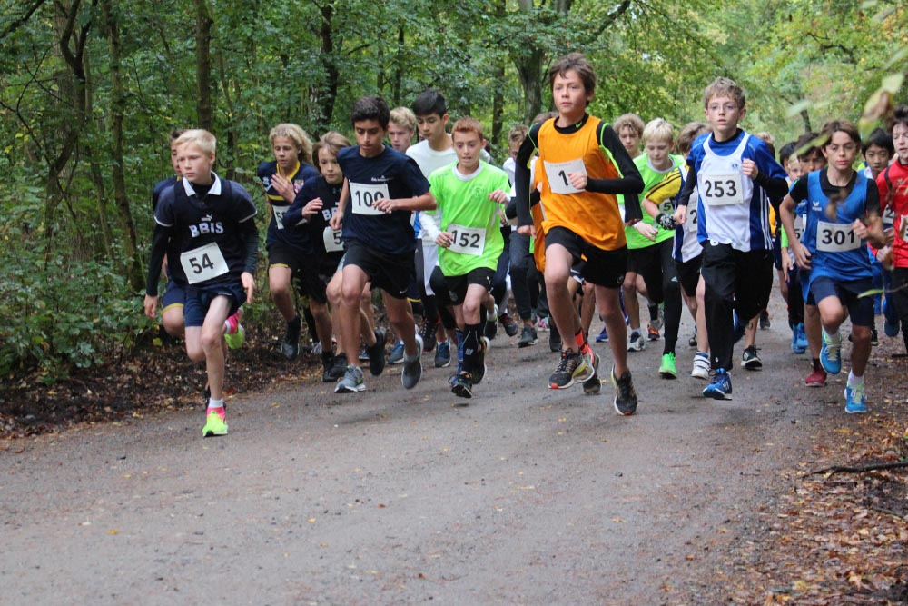 Cross Country at the FIS